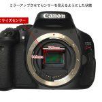 デジタル一眼レフカメラの「フルサイズセンサー」と「APS-Cサイズセンサー」で何が変わる?
