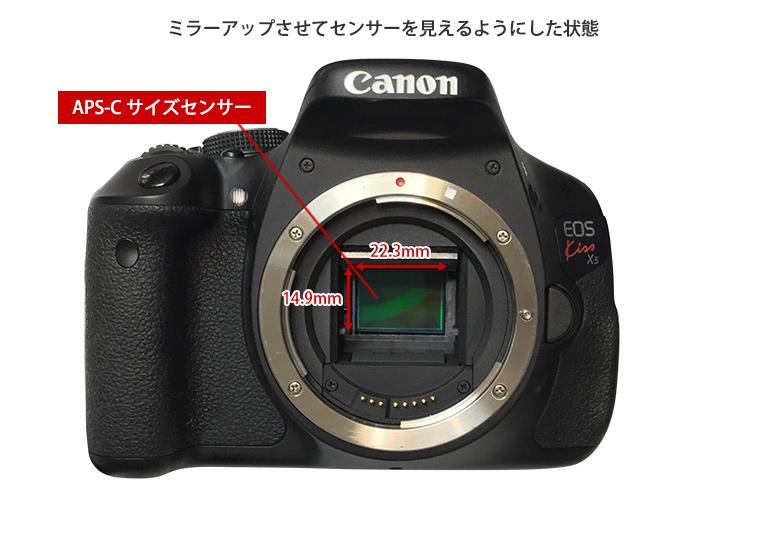 キヤノンEOS-X5-APS-C