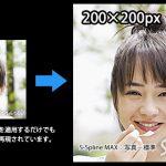 リアルな質感で細部まで高精細に拡大できるソフト「BenVista Photozoom Pro6」を使って実際に画像を拡大してみる(1/2)