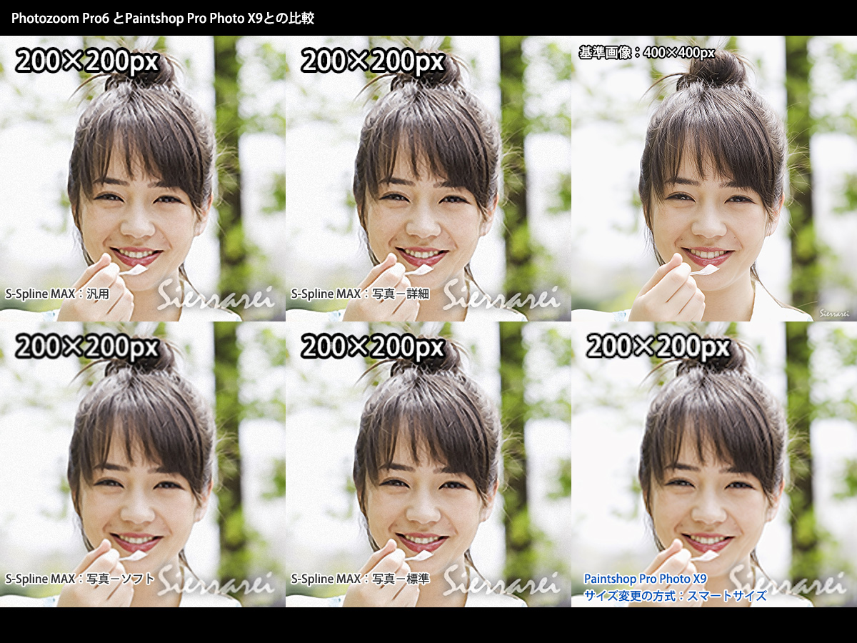 「Photozoom Pro6」と「Paintshop Pro Photo X9」の画像拡大比較