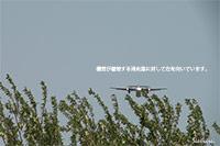 JA846C着陸シーン(大阪国際空港・伊丹空港)