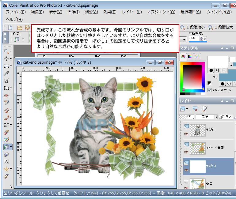 Paint Shop Pro Photo(ペイントショッププロ)-Paint Shop Pro Photo(ペイントショッププロ)-画像の合成14