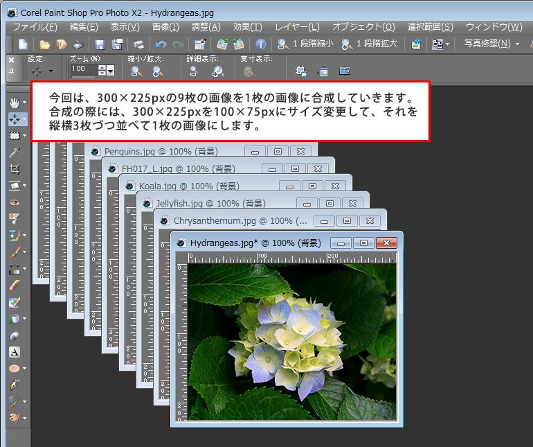 Paint Shop Pro Photo(ペイントショッププロ)-複数画像を1枚の画像に合成する方法1