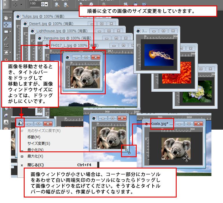 Paint Shop Pro Photo(ペイントショッププロ)-複数画像を1枚の画像に合成する方法4
