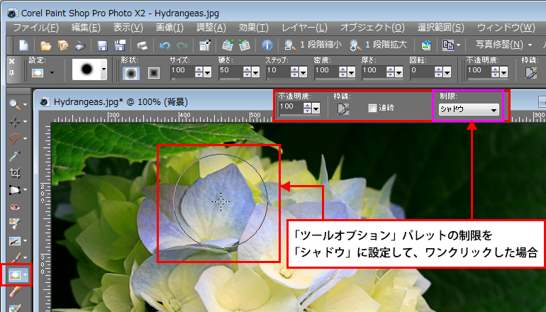 Paint Shop Pro Photo(ペイントショッププロ)-覆い焼き2-1
