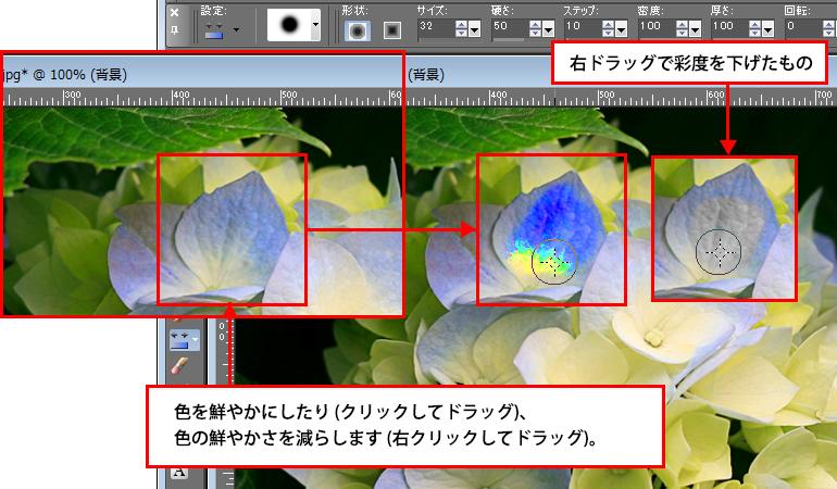 Paint Shop Pro Photo(ペイントショッププロ)-彩度2