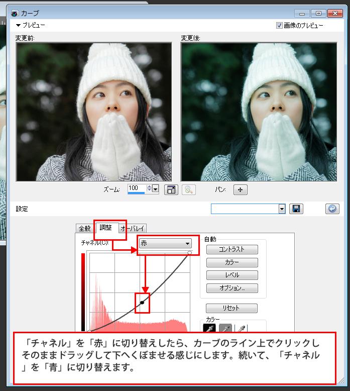 Paint Shop Pro Photo(ペイントショッププロ)-雪が降っているようなイメージを作る方法3