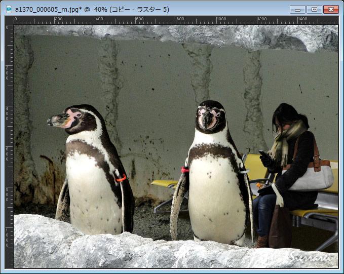 ベンチでスマホを見る女性とペンギン