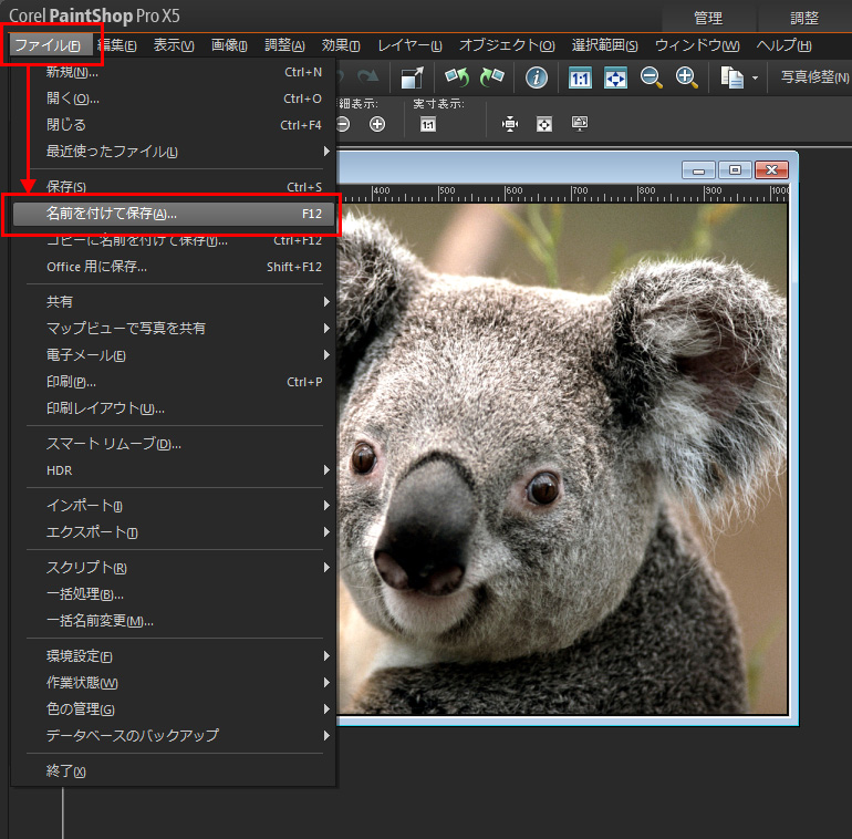 Paint Shop Pro Photo(ペイントショッププロ)-JPG保存をする際のファイルサイズについて1