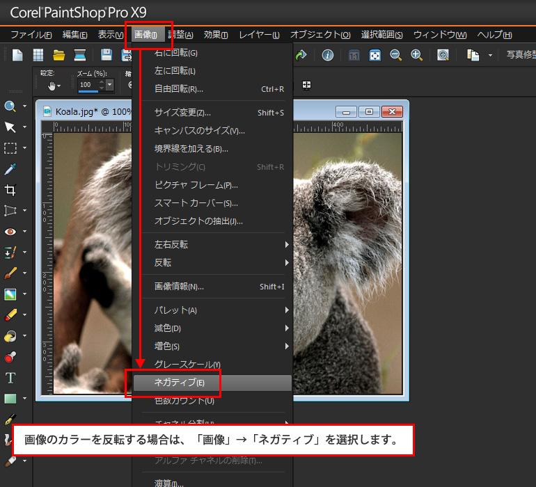 Paint Shop Pro Photo(ペイントショッププロ)-写真を白黒フィルムで撮影したようにする。カラーを反転させてネガにする方法3