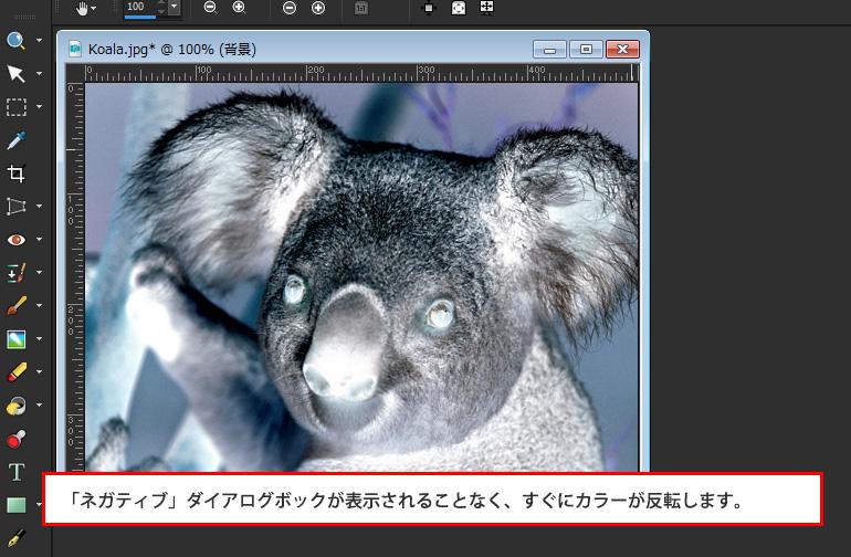 Paint Shop Pro Photo(ペイントショッププロ)-写真を白黒フィルムで撮影したようにする。カラーを反転させてネガにする方法4
