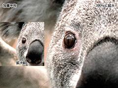 Paintshop PRO PHOTO 画像拡大アルゴリズムの違い