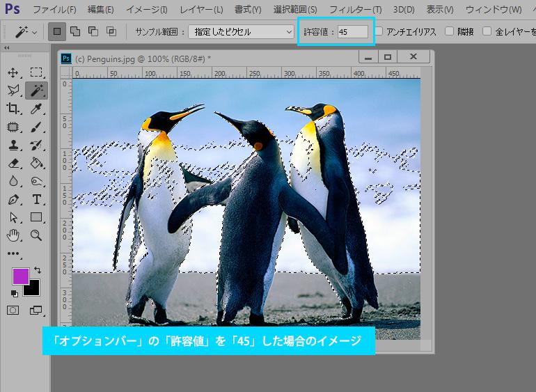 Photoshop CC 自動選択ツール
