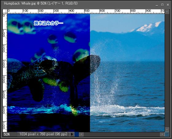 Adobe Photoshop Elements7 操作マニュアル(使い方)アドビ フォトショップ エレメンツ7-レイヤーパレットの描画モードを変更すると5