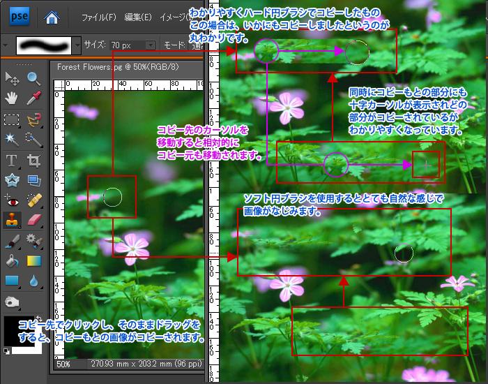 Photoshop Elements(フォトショップエレメンツ)-コピースタンプツール