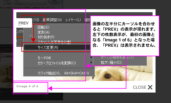 Photoshop Elements(フォトショップエレメンツ)-拡大した画像の操作について