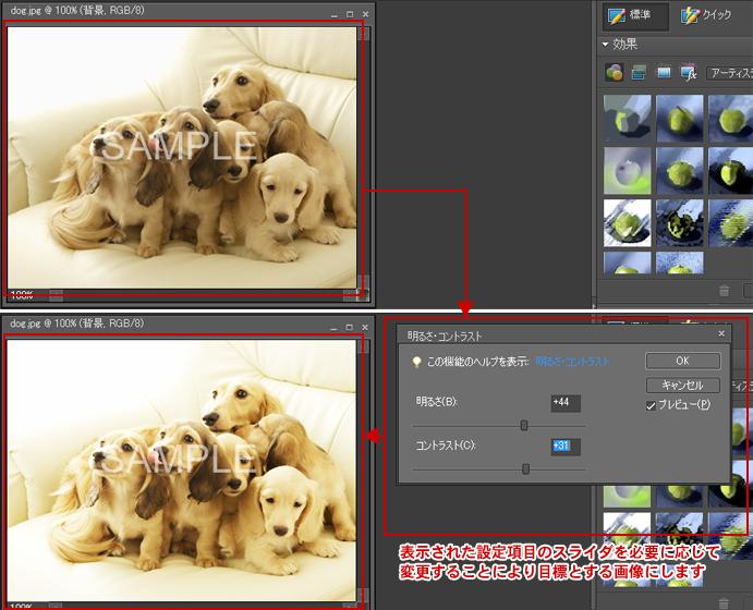 Photoshop Elements(フォトショップエレメンツ)-画質補正