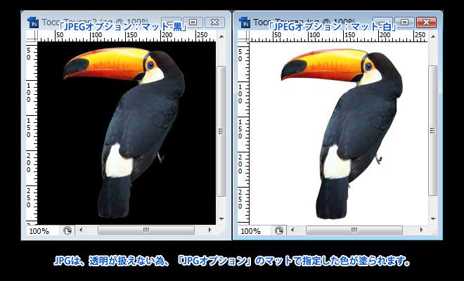 Adobe Photoshop Elements7 操作マニュアル(使い方)-切り抜いて透明がある場合のJPG保存のポイント2