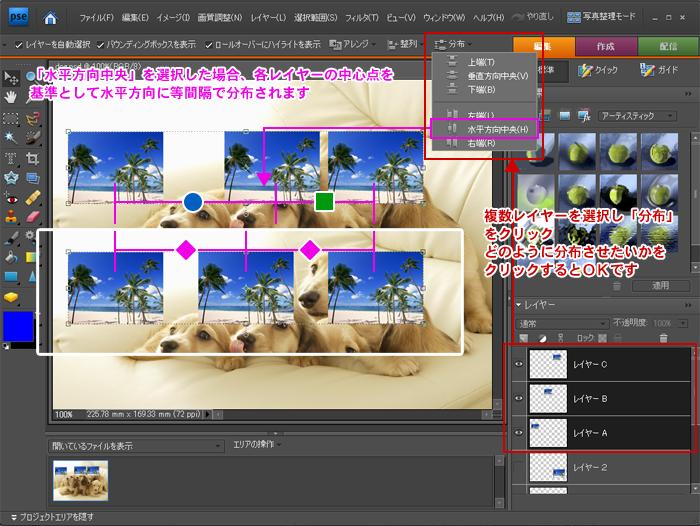 Photoshop Elements(フォトショップエレメンツ)-移動ツール