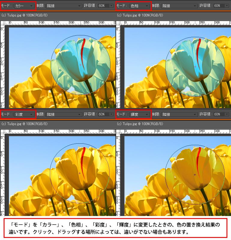 Photoshop Elements(フォトショップエレメンツ)-色の置き換えツール