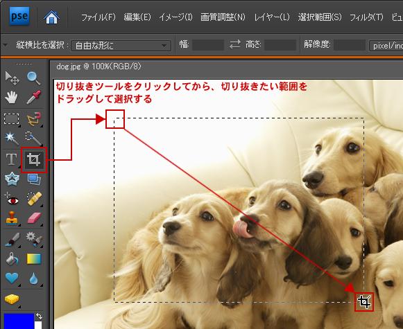 Photoshop Elements(フォトショップエレメンツ)-画像の切り抜き(トリミング)
