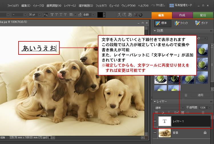 Photoshop Elements(フォトショップエレメンツ)-横書き文字ツール