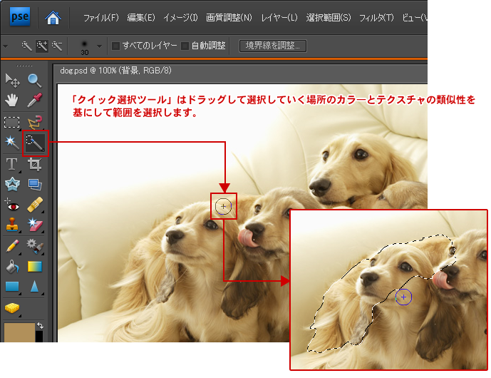 Photoshop Elements(フォトショップエレメンツ)-クイック選択ツール