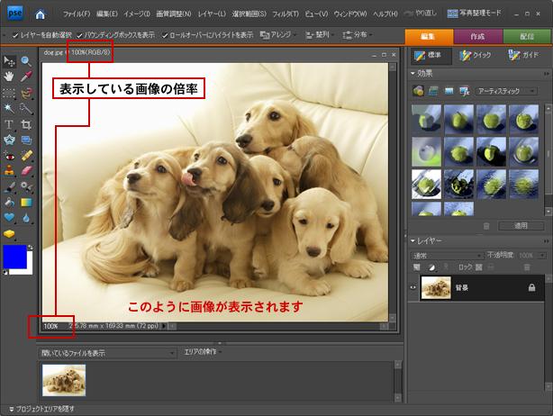 Photoshop Elements(フォトショップエレメンツ)-画像のサイズ変更
