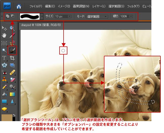 Photoshop Elements(フォトショップエレメンツ)-選択ブラシツール