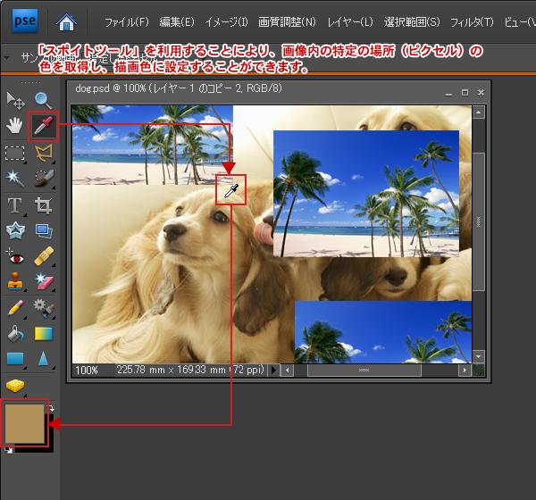Photoshop Elements(フォトショップエレメンツ)-スポイトツール
