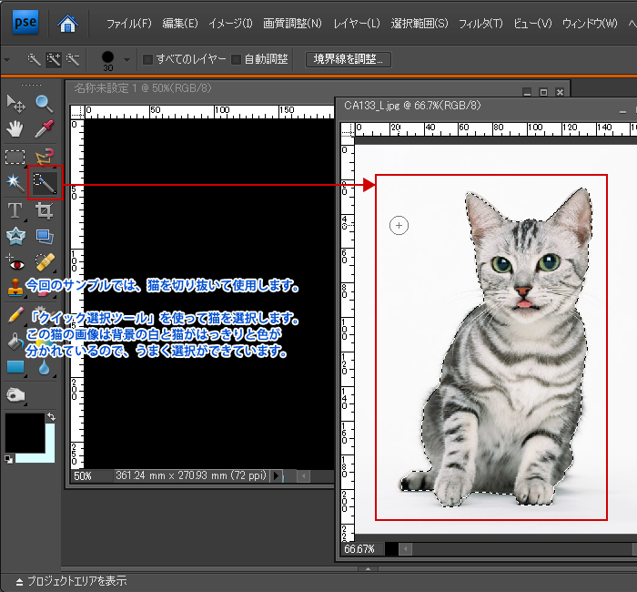 Photoshop Elements(フォトショップエレメンツ)-パソコンや携帯電話用の壁紙を作る