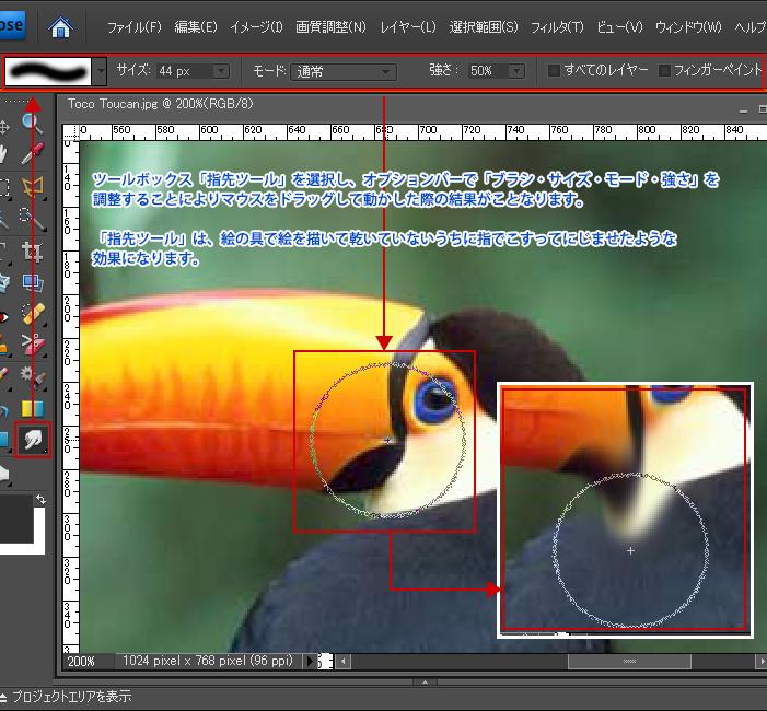 Photoshop Elements(フォトショップ エレメンツ)指先ツール