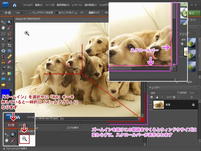 Photoshop Elements(フォトショップエレメンツ)-ズームツール