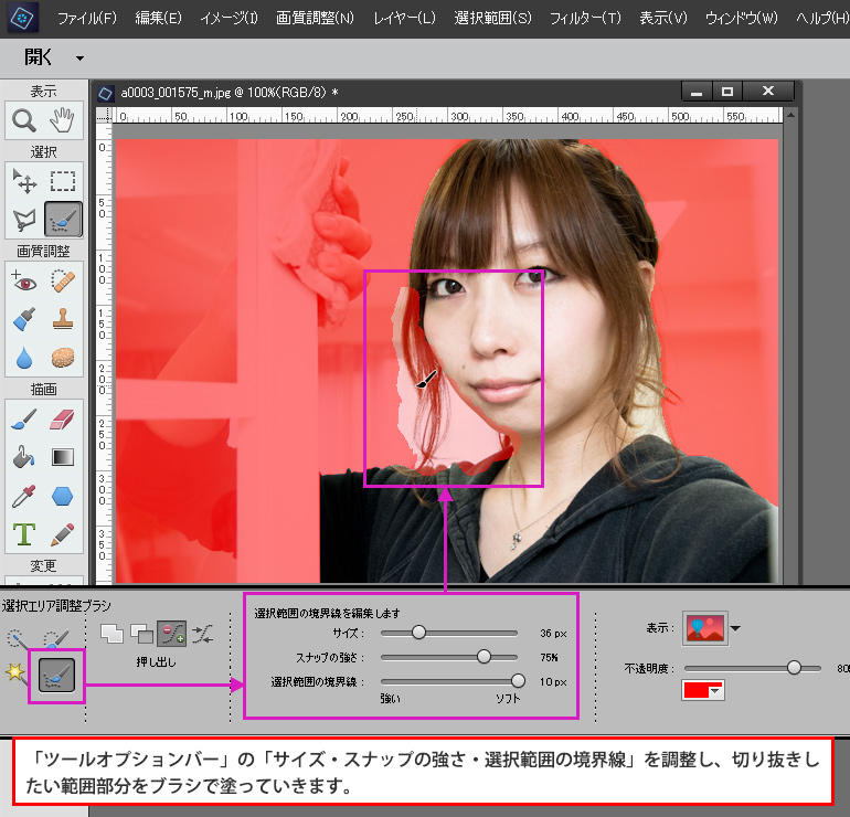 Photoshop Elements 「クイック選択ツール」を使っての髪の毛の切り抜き
