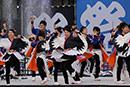 岐阜聖徳学園大学  柳